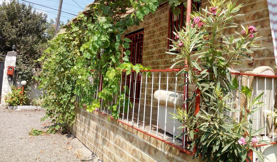 حیاط ویلا باغ روستایی