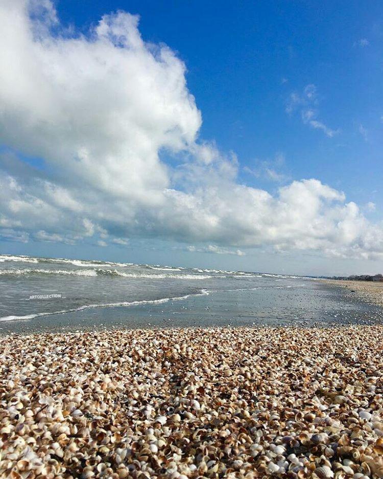 زمین ساحلی ۱۹۴ متری زیباکنار