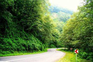 تصویری از جاده سیاهکل خرید خانه باغ شمال سیاهکل دیلمان