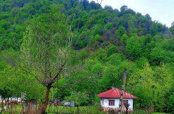 خانه باغ ارزان شمال