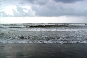 عکس دریا زیباکنار انزلی