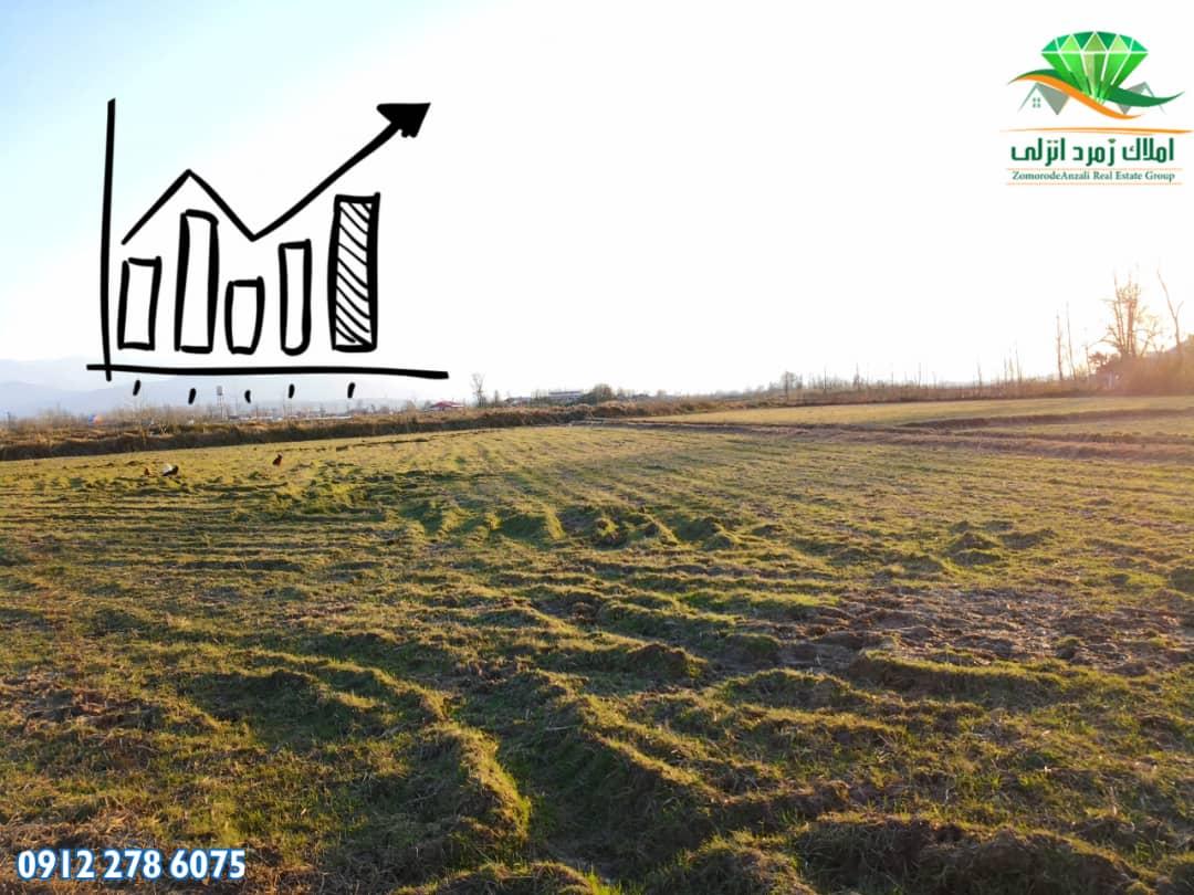زمین کشاورزی هکتاری شمال متری ۱۵ هزار تومان